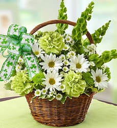 St. Patrick's Basket from Victor Mathis Florist in Louisville, KY