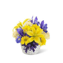 The FTD Spirit of Spring Basket