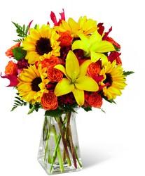 Louisville, KY local florist Victor Mathis Florist