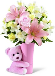 The FTD Baby Girl Big Hug Bouquet from Victor Mathis Florist in Louisville, KY