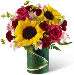 The FTD Fresh Outlooks Bouquet from Victor Mathis Florist in Louisville, KY