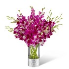 The FTD Orchid Bouquet by Vera Wang