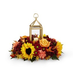 The FTD Giving Thanks Centerpiece from Victor Mathis Florist in Louisville, KY