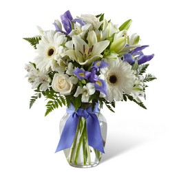The FTD Miracle's Light Hanukkah Bouquet from Victor Mathis Florist in Louisville, KY