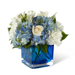 The FTD Peace & Light Hanukkah Bouquet from Victor Mathis Florist in Louisville, KY