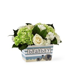 The FTD Darling Baby Boy Bouquet from Victor Mathis Florist in Louisville, KY
