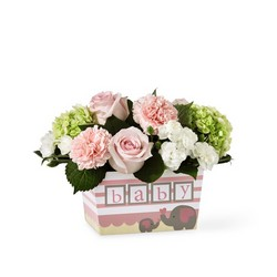 The FTD Darling Baby Girl Bouquet from Victor Mathis Florist in Louisville, KY