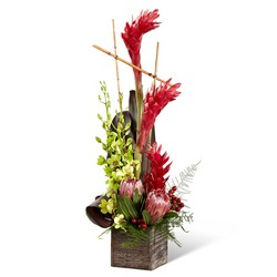 The FTD Tropical Bright Arrangement from Victor Mathis Florist in Louisville, KY