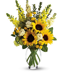 Here Comes The Sun by Teleflora from Victor Mathis Florist in Louisville, KY