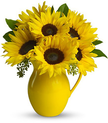 Teleflora's Sunny Day Pitcher of Sunflowers from Victor Mathis Florist in Louisville, KY