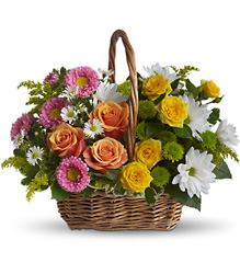 Sweet Tranquility Basket from Victor Mathis Florist in Louisville, KY