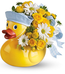 Teleflora's Ducky Delight from Victor Mathis Florist in Louisville, KY