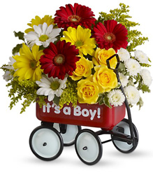 Baby's Wow Wagon by Teleflora from Victor Mathis Florist in Louisville, KY
