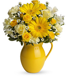Teleflora's Sunny Day Pitcher of Cheer from Victor Mathis Florist in Louisville, KY