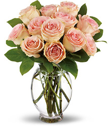 Teleflora's Delicate Dozen from Victor Mathis Florist in Louisville, KY