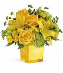 Teleflora's Sunny Mood Bouquet from Victor Mathis Florist in Louisville, KY