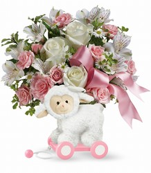 Teleflora's Sweet Little Lamb - Baby Pink from Victor Mathis Florist in Louisville, KY