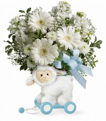 Teleflora's Sweet Little Lamb - Baby Blue from Victor Mathis Florist in Louisville, KY